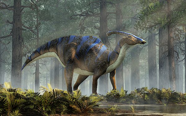 Parasaurolophus In A Forest by Daniel Eskridge #dinosaurart