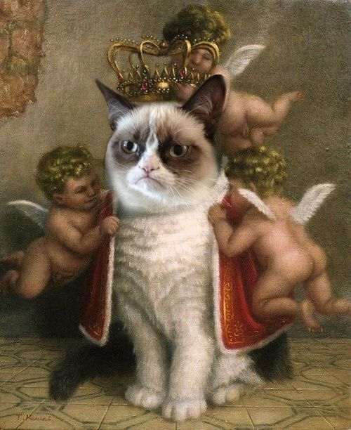 #GrumpyCat #FanArt Grumpy Cat™ stuff, gifts, offers couponsand meme on www.pinterest.com/erikakaisersot
