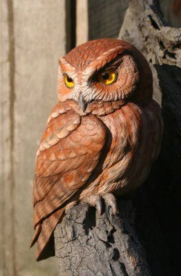 Eastern Screech Owl Wood Carving