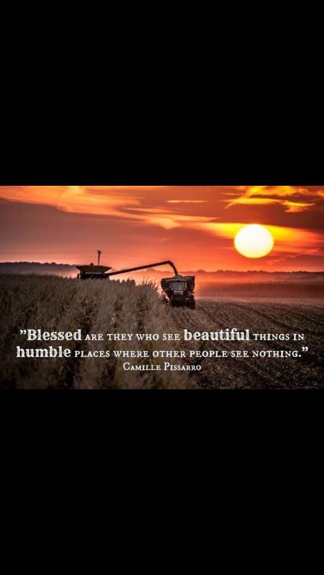 I'm blessed | The Farm | Farm quotes, Agriculture quotes