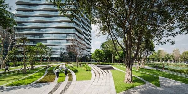 Charming Approaching The New Head Office Building, The Combination Of A Preserved  Banyan Tree And Landscape