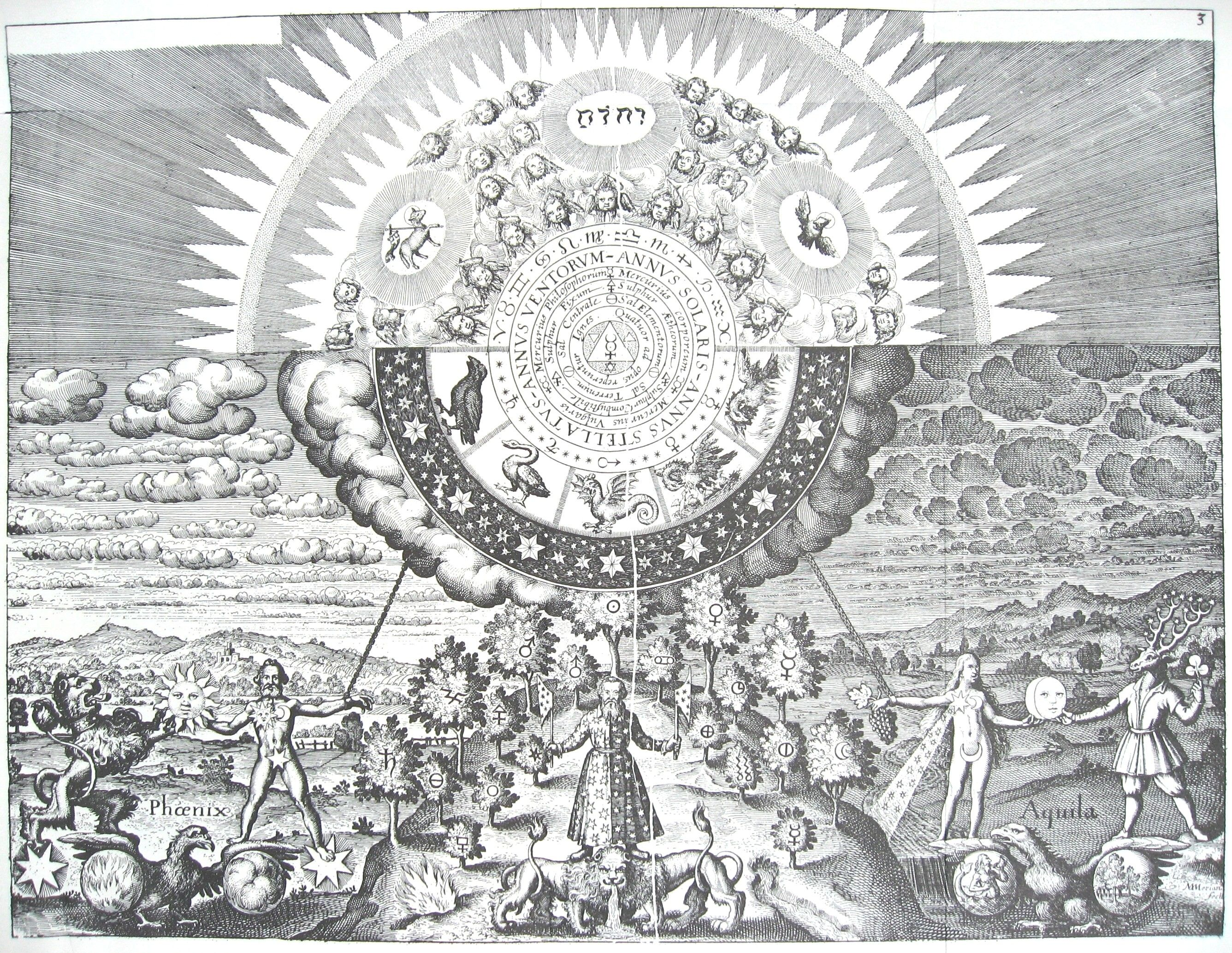 17 best alchemy images on pinterest alchemy full metal note the double lion guarding the start of the alchemical process shown in this picture biocorpaavc Images