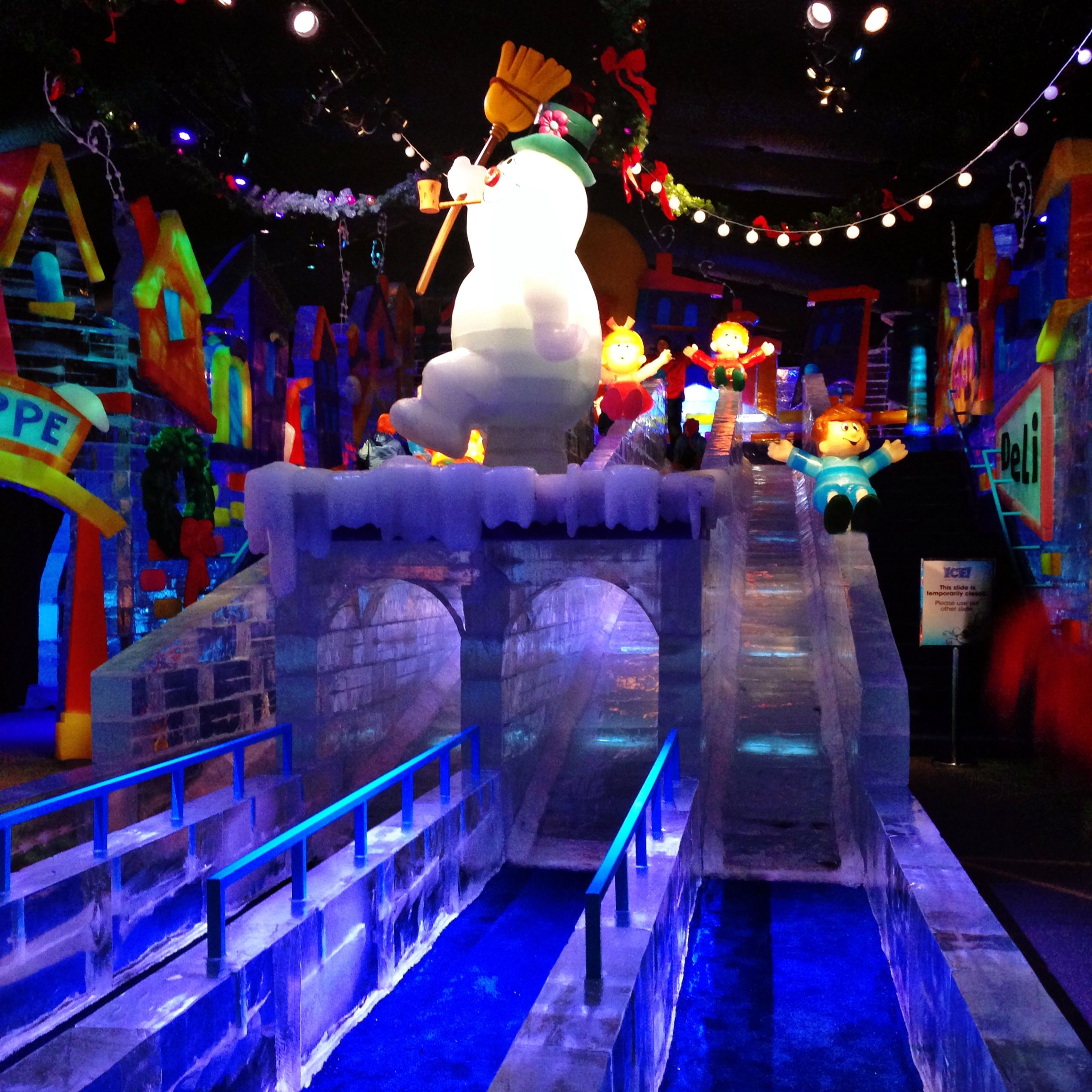 the ice slides at ice at the gaylord palms during their christmas at gaylord palms - Christmas At Gaylord Palms