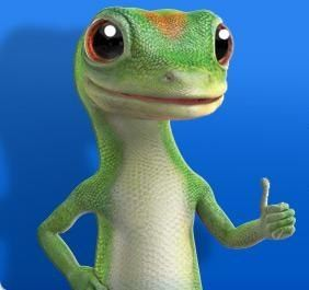 Did You Know The Gecko S Name Is Martin Gecko Early Childhood