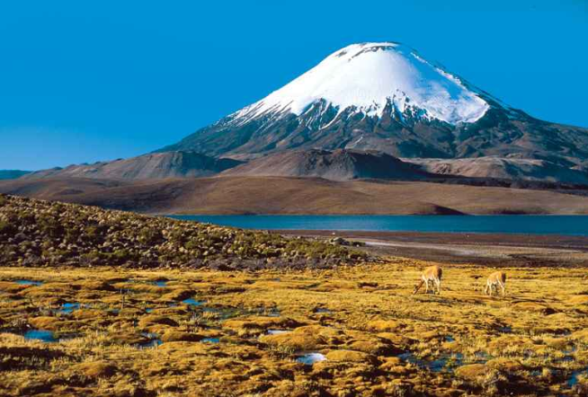 Atacama desert, north of Chile