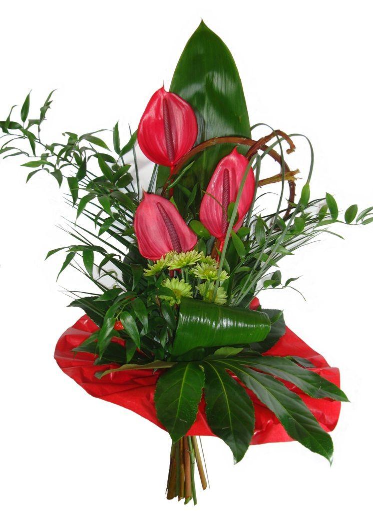 Znalezione Obrazy Dla Zapytania Anturium Bukiet Flowers Plants Florist