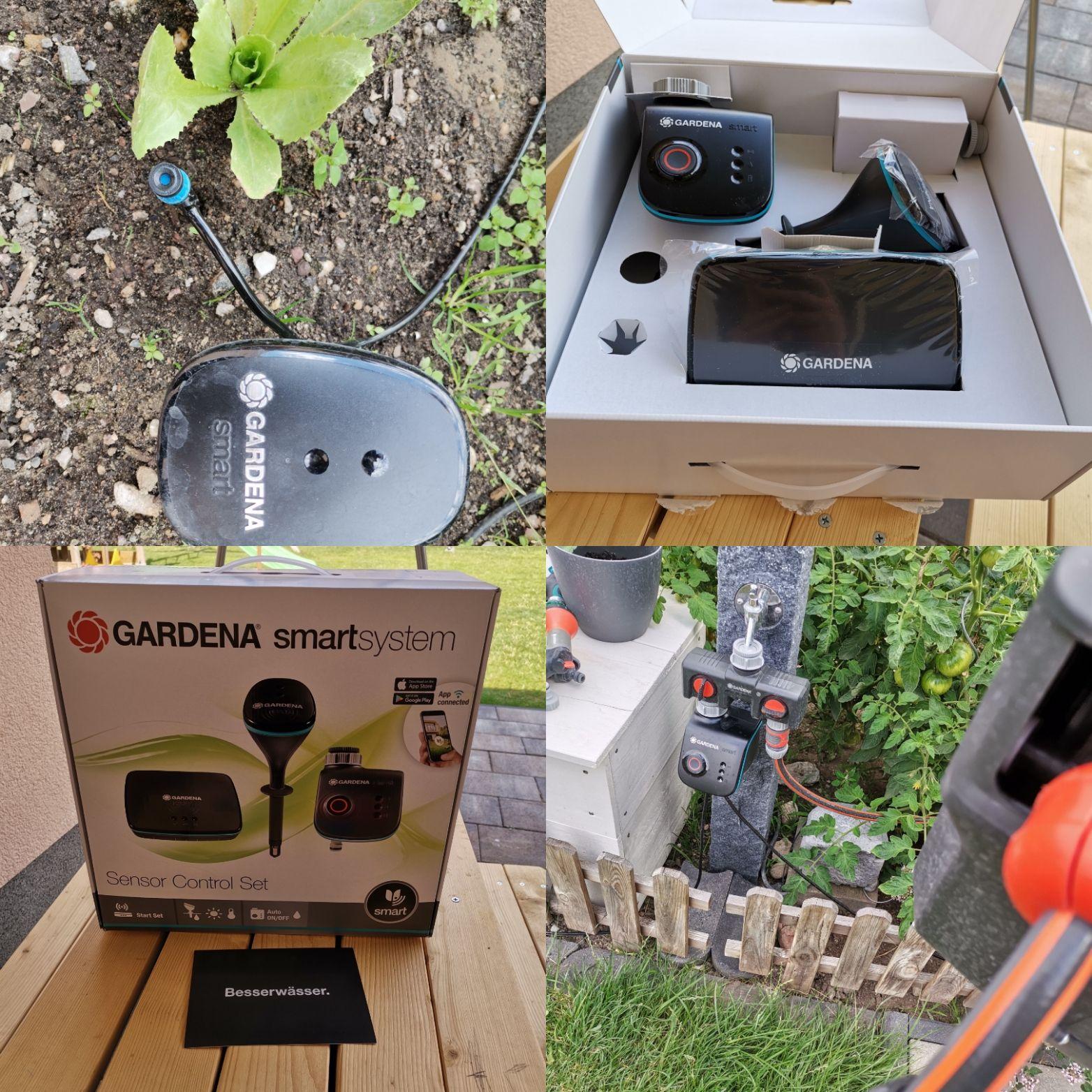 Der Smarte Garten Rasenpflege Bewasserungscomputer Beerenstraucher