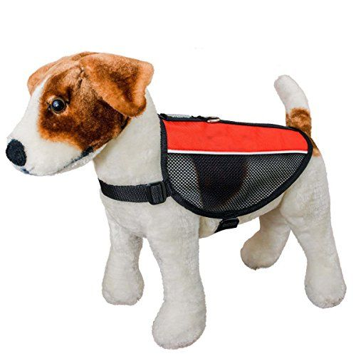 Dog Harness Lumsing Reflective Mesh Dog Harness Vest Soft Pet Harness for Small Dogs Red >>> You can find more details by visiting the image link.Note:It is affiliate link to Amazon.