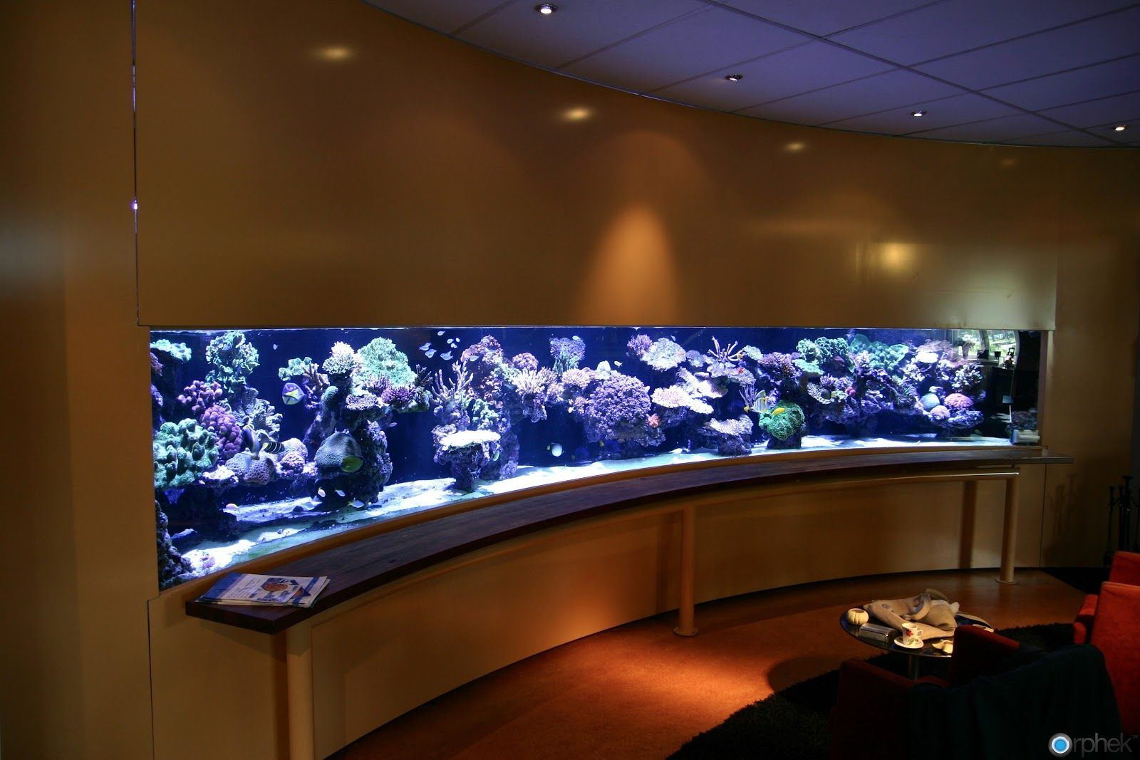 Office entrance aquarium Idea Office Ideas Pinterest Office
