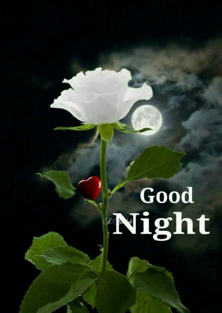 Good Night Sweet Dreams - Plz Keep Smile - Fun | Masti | Smile
