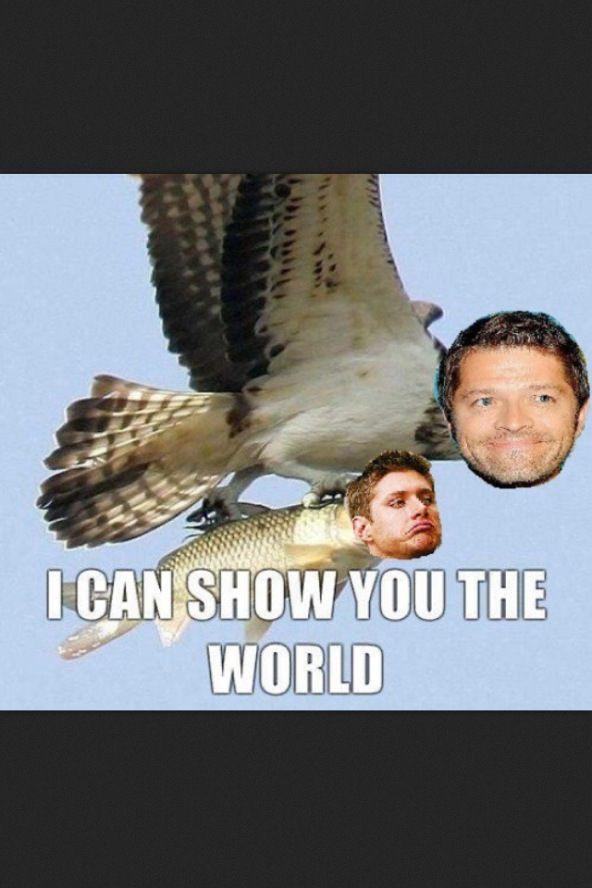 Cas and Dean Supernatural
