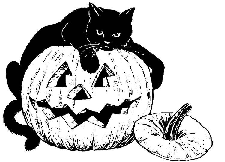 Malvorlage schwarze Katze auf Kürbis | cats | Pinterest | Schwarze ...