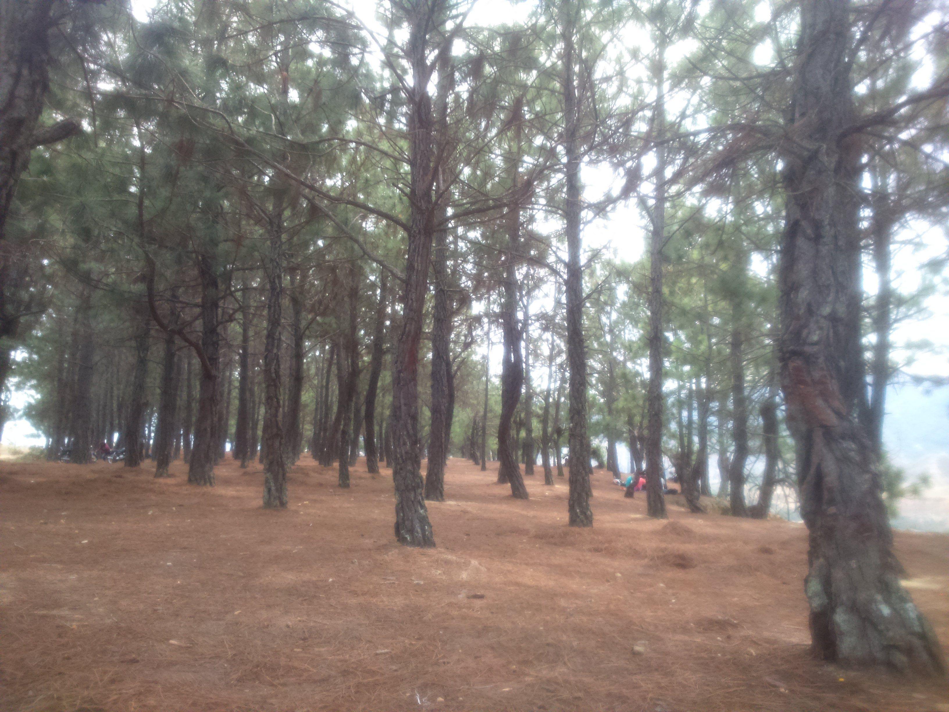 #losPinos Bello lugar pacifico en el Municipio de la Playa de Belen