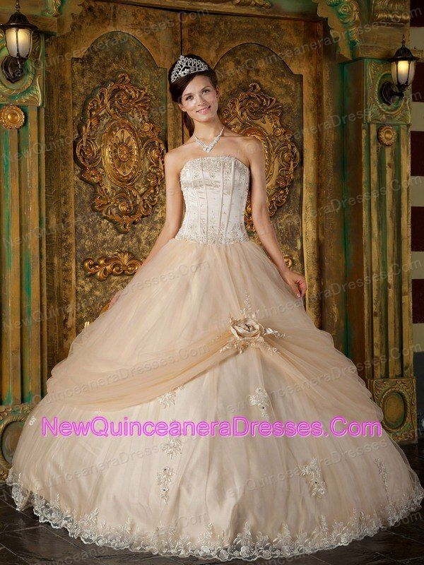http://www.newquinceaneradresses.com/color/baby pink-quinceanera-   dresses   2015 Newest Design Stunning sweet sixteen dresses  2015 Newest Design Stunning sweet sixteen dresses