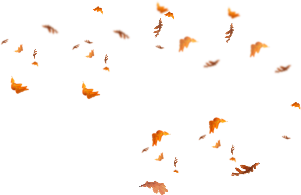 Download Falling Leaves Png Images Flying Autumn Leaf Png Free Fall Leaves Png Autumn Leaves Texture Graphic Design