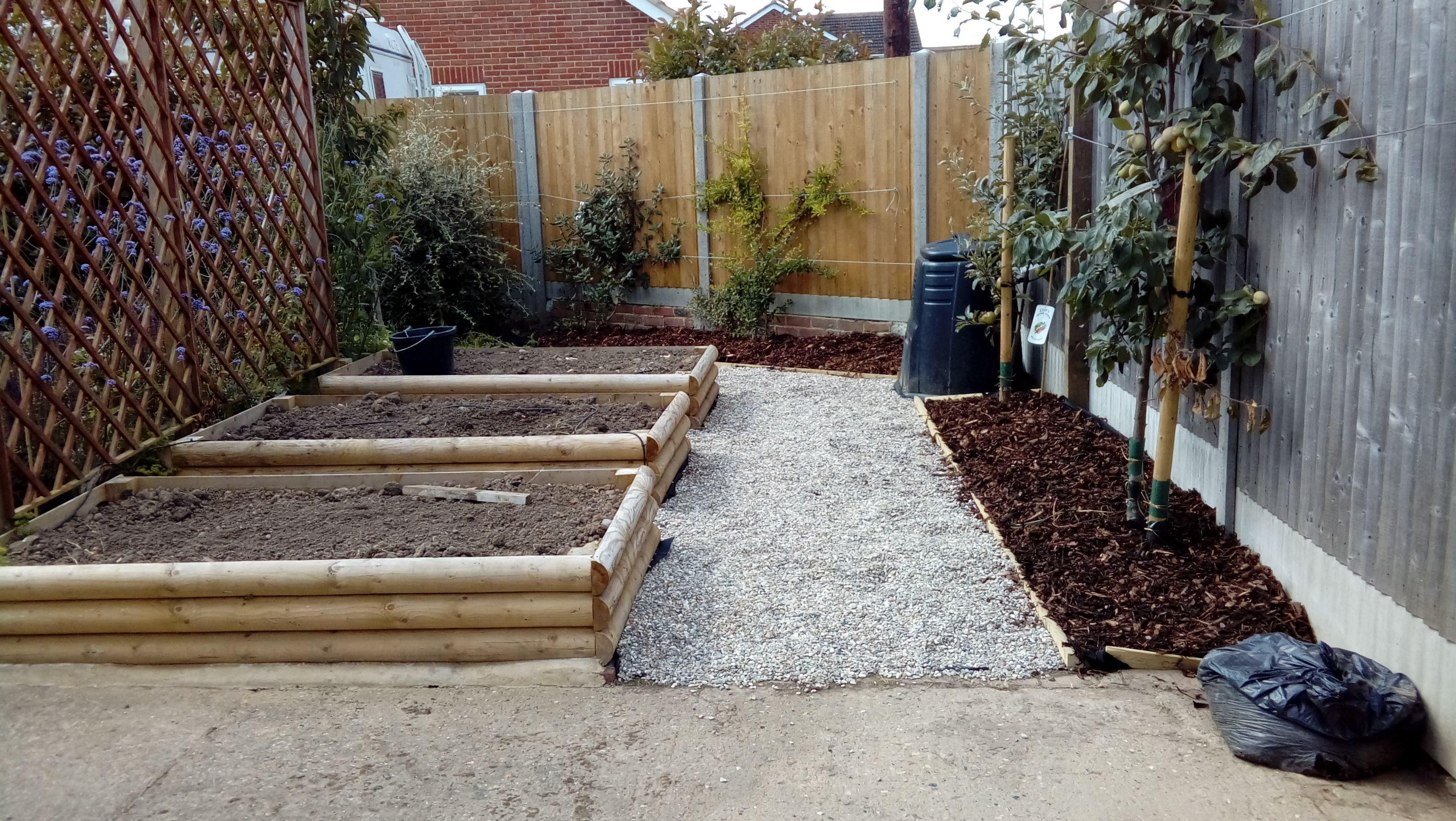 Garden bed with trees  Raised veg beds and espalier fruit trees to maximise the planting