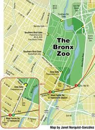 Boston Subway Map To Zoo.Bronx Zoo Map New York Bronx Zoo New York City Zoo Map