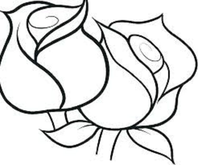 Pin By Anndrea Wolf On Design Drawings Rose Coloring Pages Flower Coloring Pages Coloring Pages For Kids