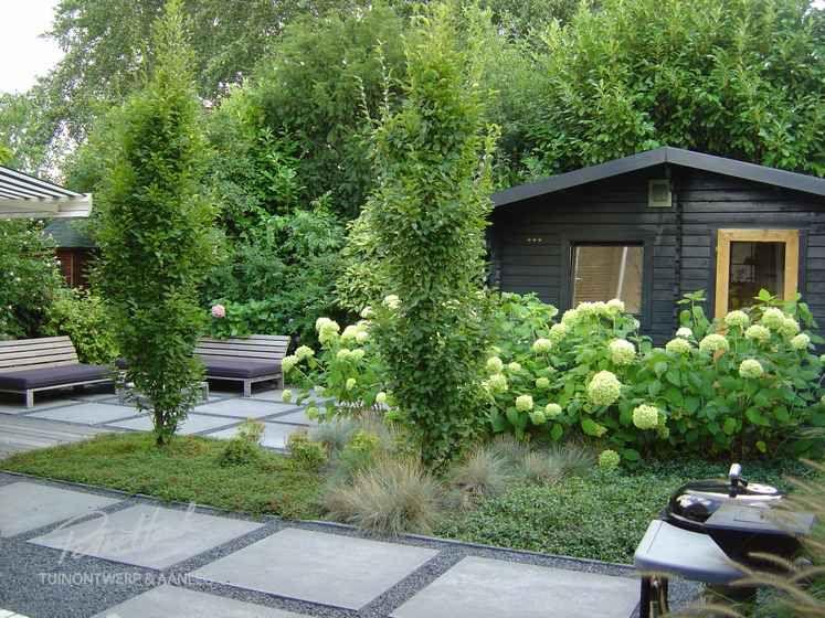 Tuin met split grote tegels vlonder en zuilbomen for Voorbeeldtuinen kleine tuin
