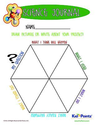 Science Experiment Worksheet For 1st 2nd And 3rd Graders