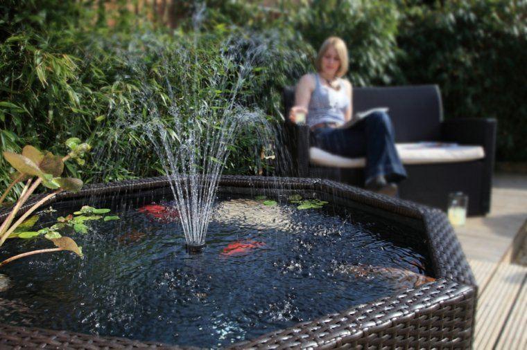Jardins aquatiques : 101 idées de bassins et de fontaines extérieurs ...
