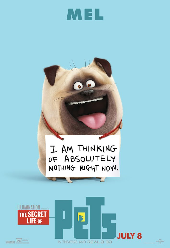 The Secret Life Of Pets Coming Soon Pets Funny Comingsoon July8 Amptalent Pets Movie Secret Life Of Pets Secret Life
