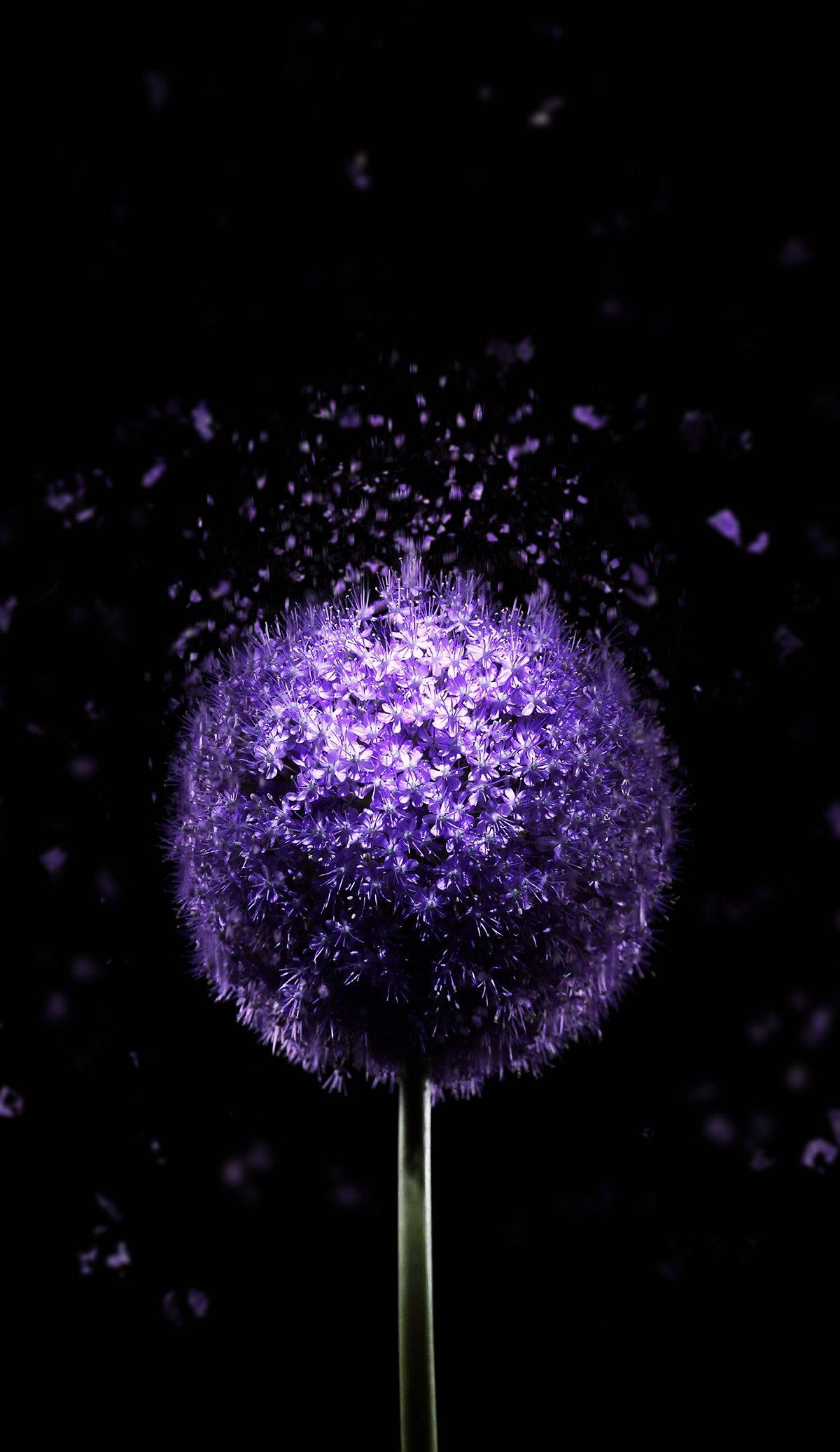 1200x2074 Violet Flower 4K AMOLED Wallpaper Purple