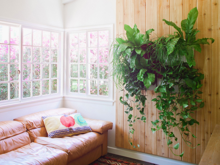 15 Gorgeous Ways To Decorate With Plants  | Living Walls, Walled Garden And  Planters