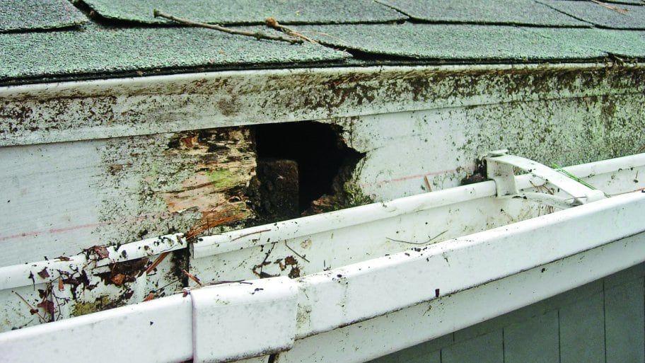 4 Fascia Board Repair Tips For Your Roof Home Repairs Fascia Board Diy Home Improvement