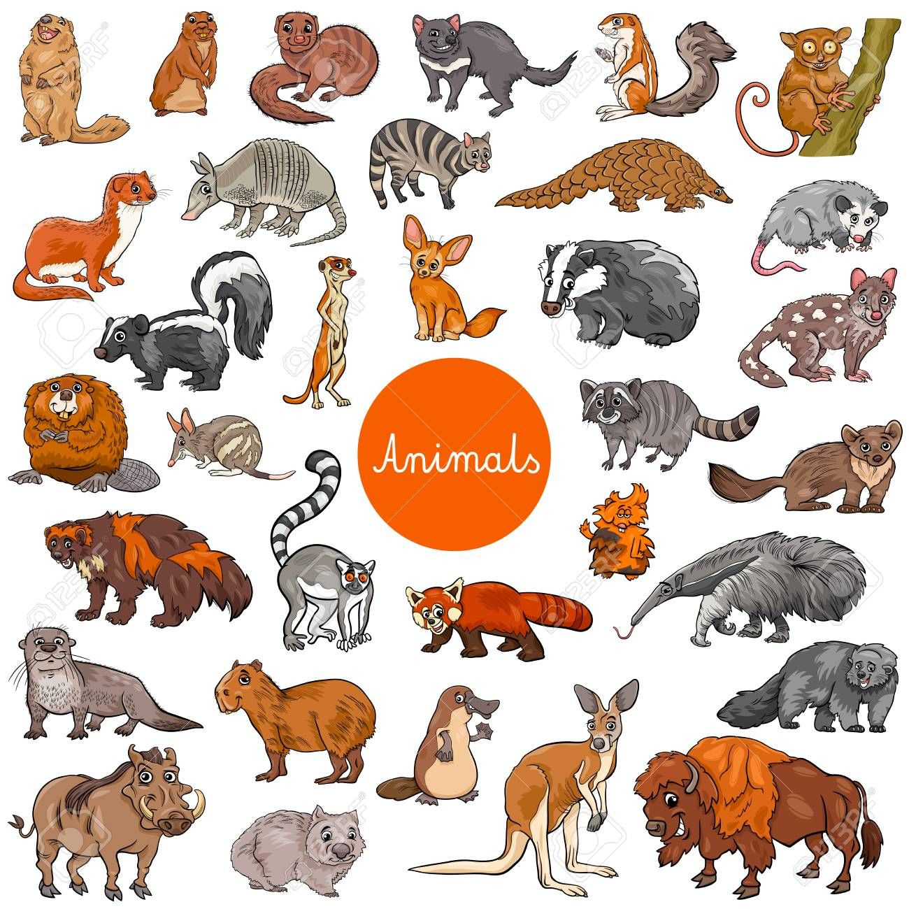 Vector Illustration Animal Kingdom Pictures Gallery Animal Icon Face Icon Cartoon Faces