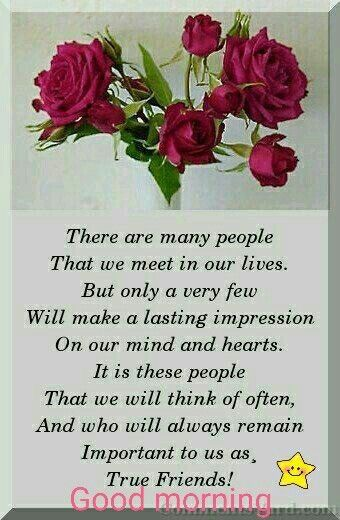Good Morning Quote Days Of The Week Friendship Quotes Morning