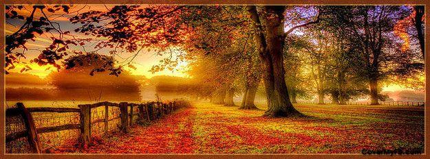 Autumn Fence Facebook Cover Autumn scenery, Autumn