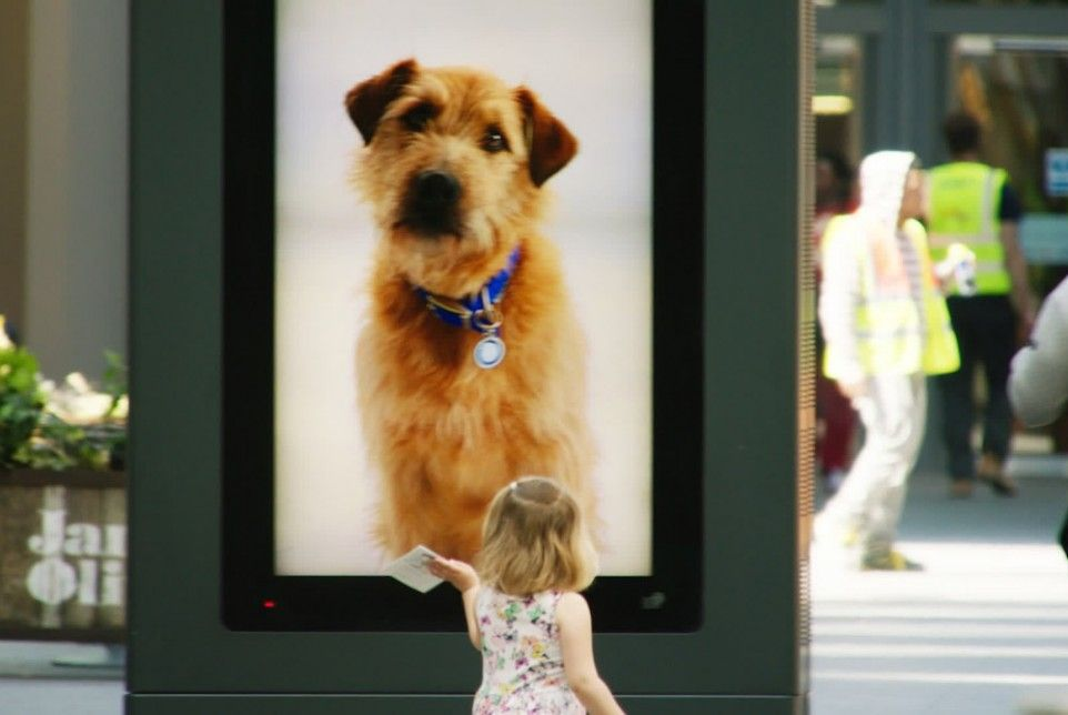 Battersea Dogs Cats Home Sent Digital Pooches To The Mall Battersea Dogs Dog Charities Battersea Dogs Home
