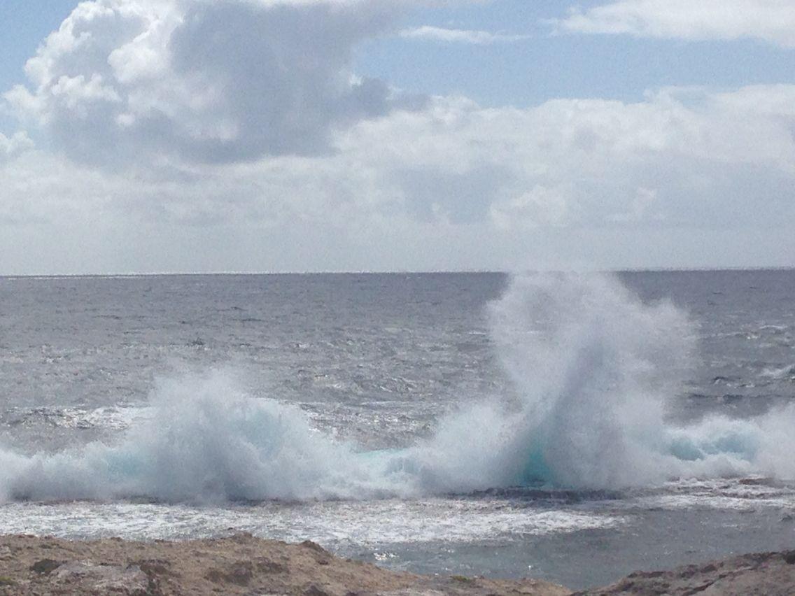 Ocean Caraïbes