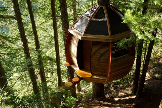 what a treehouse! though...I'm not up for walking across that little stepping-stone-ish path with the ground 20' below...eep
