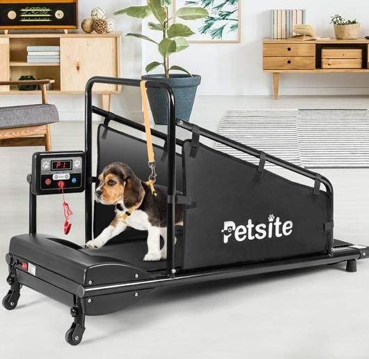 Petsite Indoor Pet Treadmill– UntilGone.com