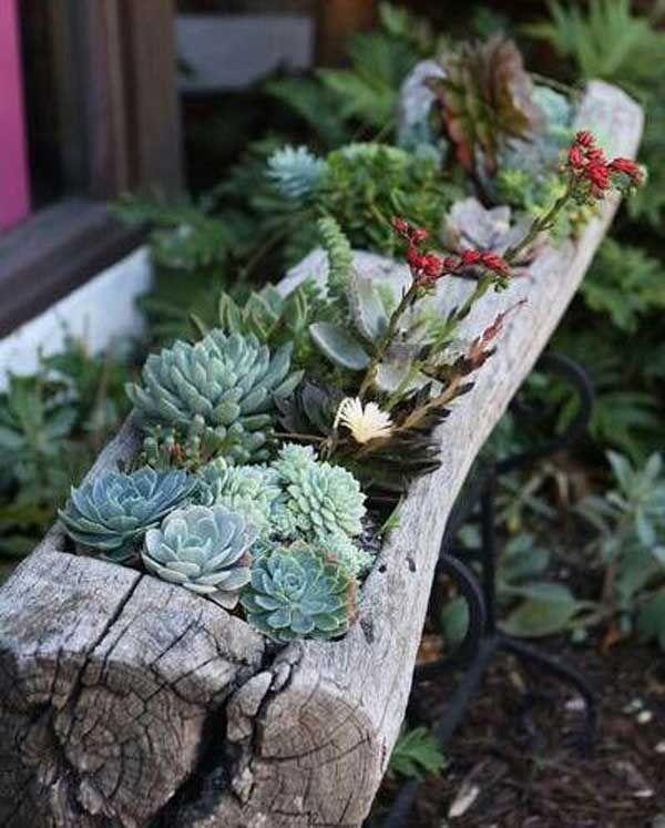 20+ mini jardines originales para una primavera diferente | mini