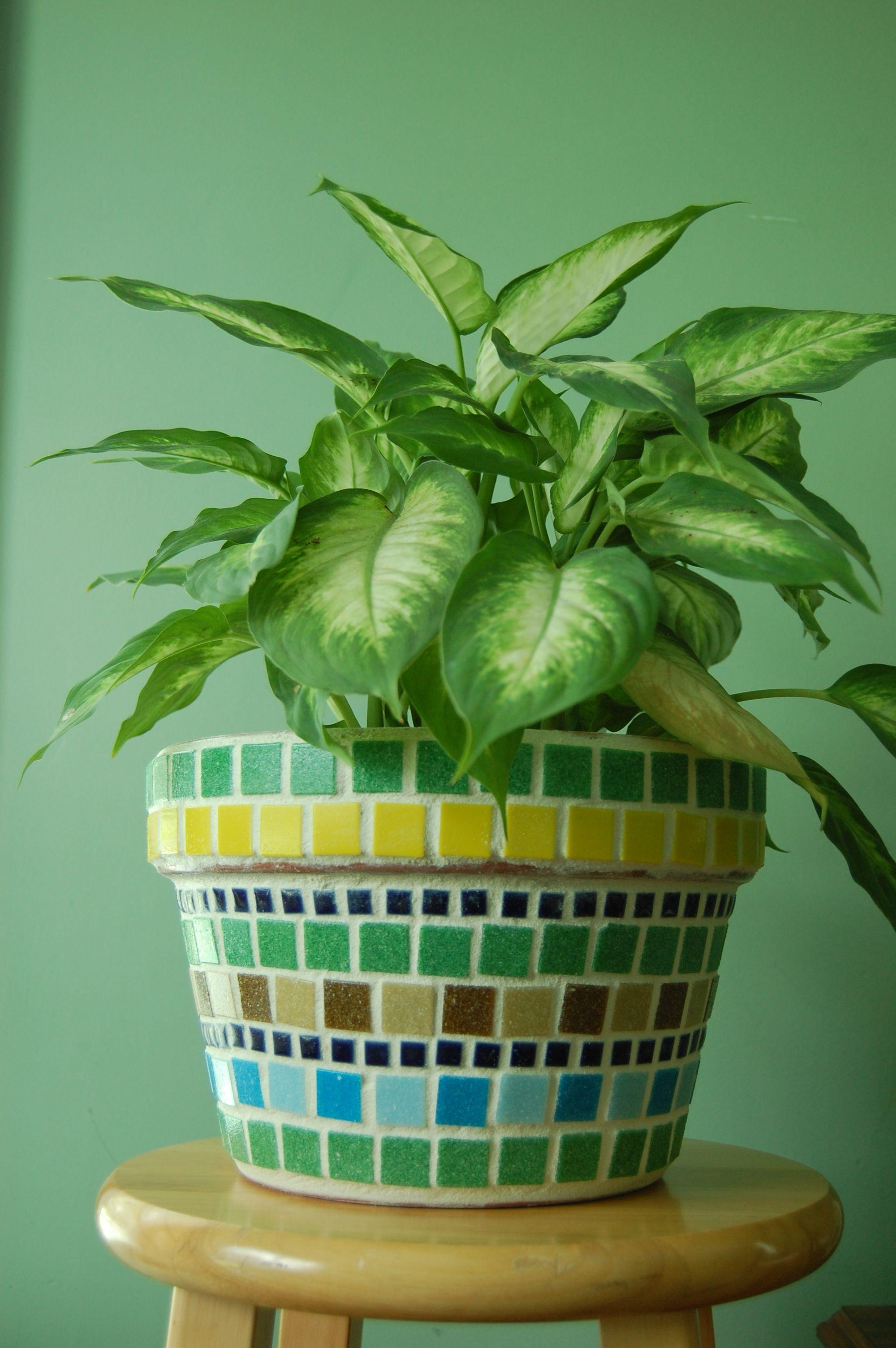 Project Ideas · Large Mosaic Pot