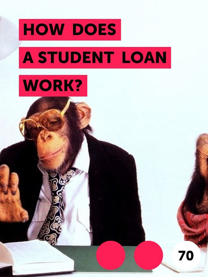 How Does a Student Loan Work? in 2020 | Student loans ...