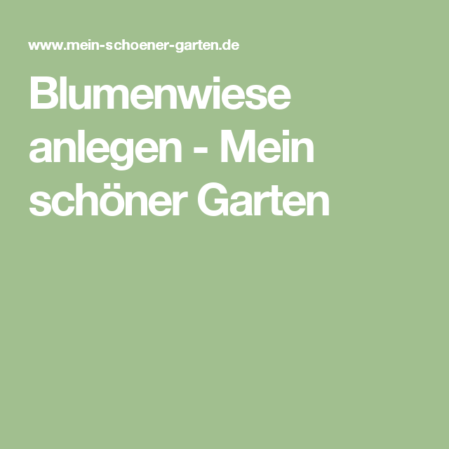 1000+ Ideas About Blumenwiese Anlegen On Pinterest | Bangkirai ... Blumenwiese Anlegen Garten