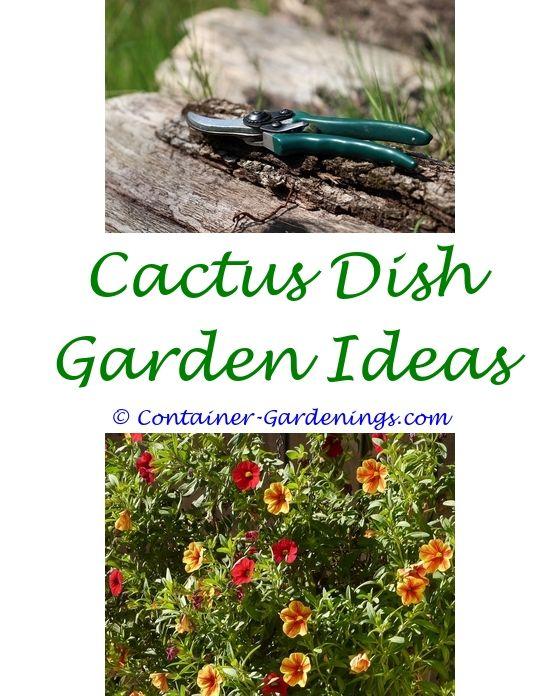 dog friendly garden designs ideas - viva pinata garden name ideas ...