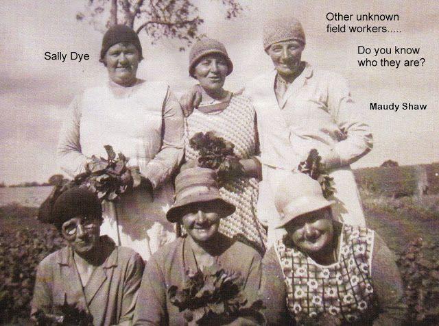 West Bilney people - Web Master - Picasa Web Albums