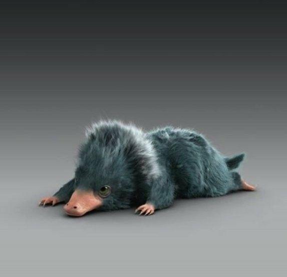 Regarder Animaux Fantastiques 2 Les Crimes De Grindelwald En Streaming Fantastic Beasts Baby Niffler Fantasticbeasts Crimesofgrindelwald Newtscarmander Pelucio Animaux Fantastiques Les Animaux Fantastiques Animaux Harry Potter