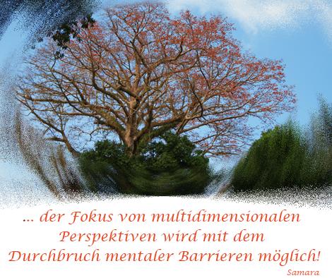 ... der Fokus von multidimensionalen #Perspektiven wird mit dem #Druchbruch mentaler Barrieren möglich!