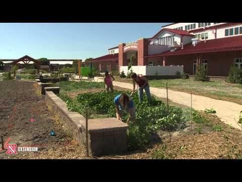 New Landscape Weed Control  --  Nebraska Extension Landscape Horticulture Specialist Kim Todd talks about controlling weeds in a new landscape.