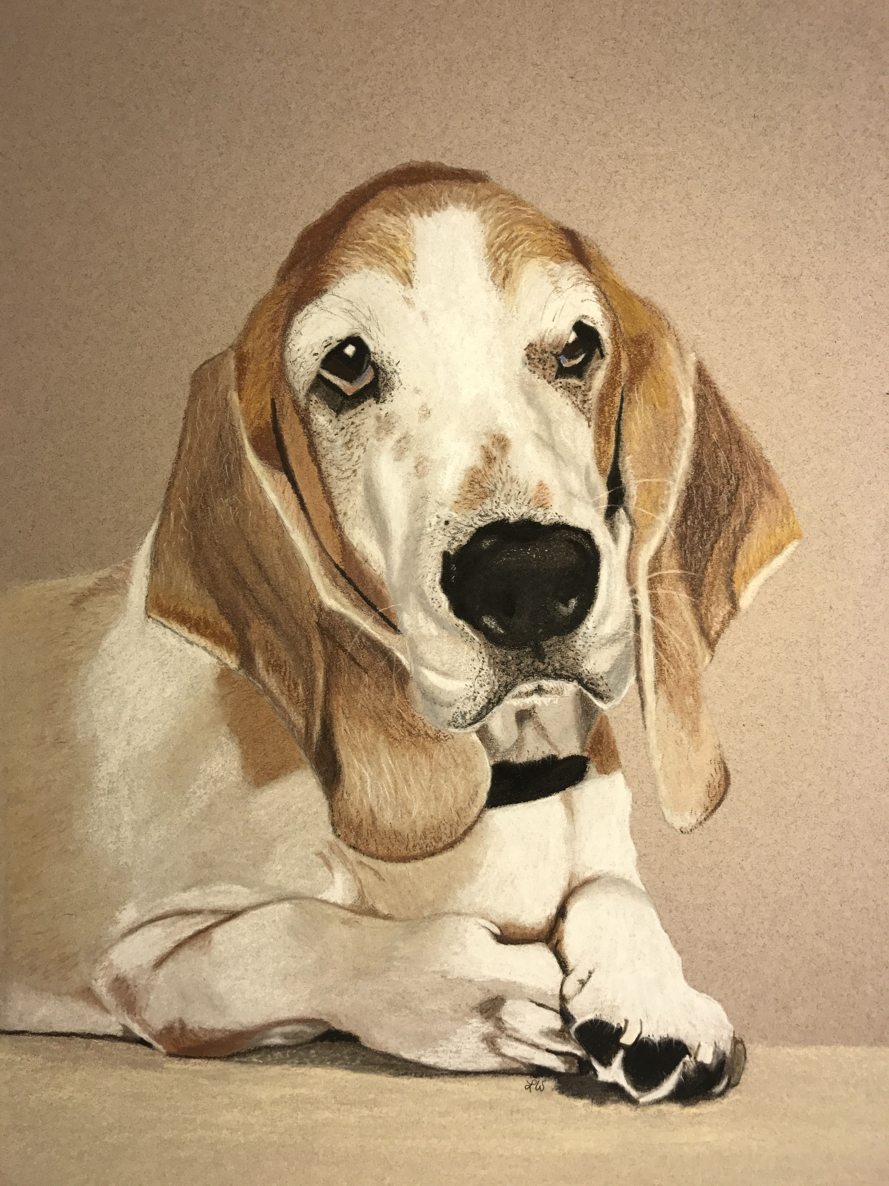 Pin By Lorie Warren On Pastels Colored Pencils And