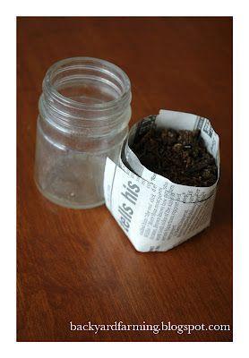 Great Garden Seed Starter Ideas#garden #great #ideas #seed #starter