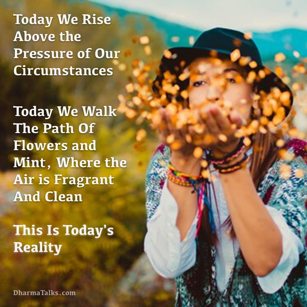 Today we rise above the pressure of our circumstances