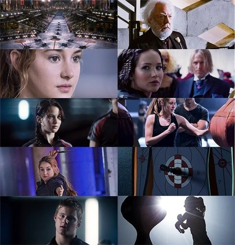 "Divergent/THG Crossover ""Who is she?"" ""Tris Prior, District 13."""