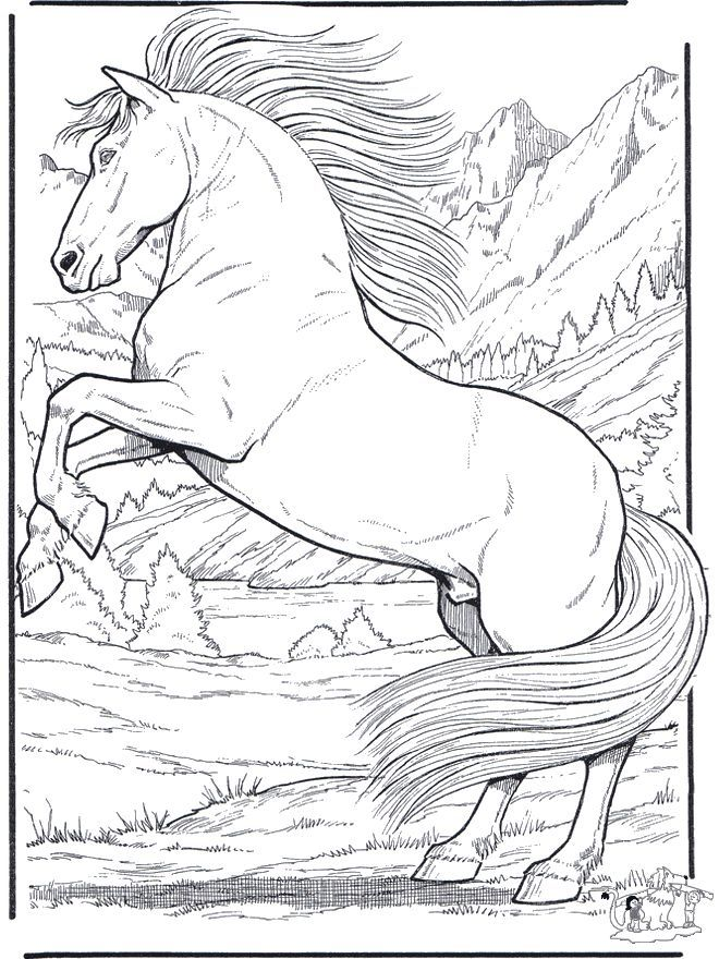 FunnyColoring Animals Coloring Pages Horses Horse 5